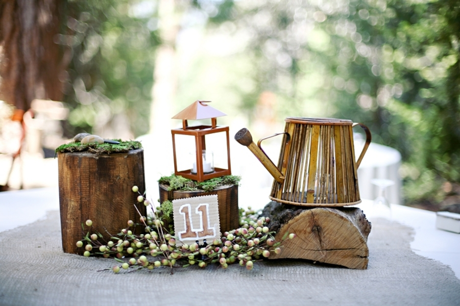 Rustic wedding in big bear california chic