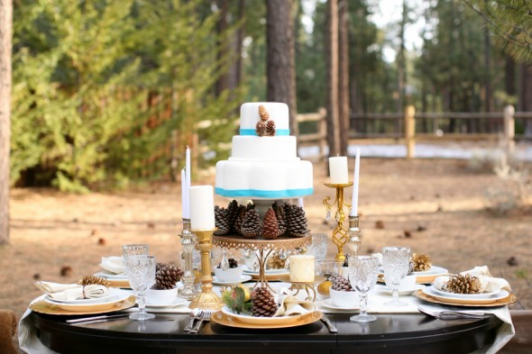wedding-cake-with-pine-cones