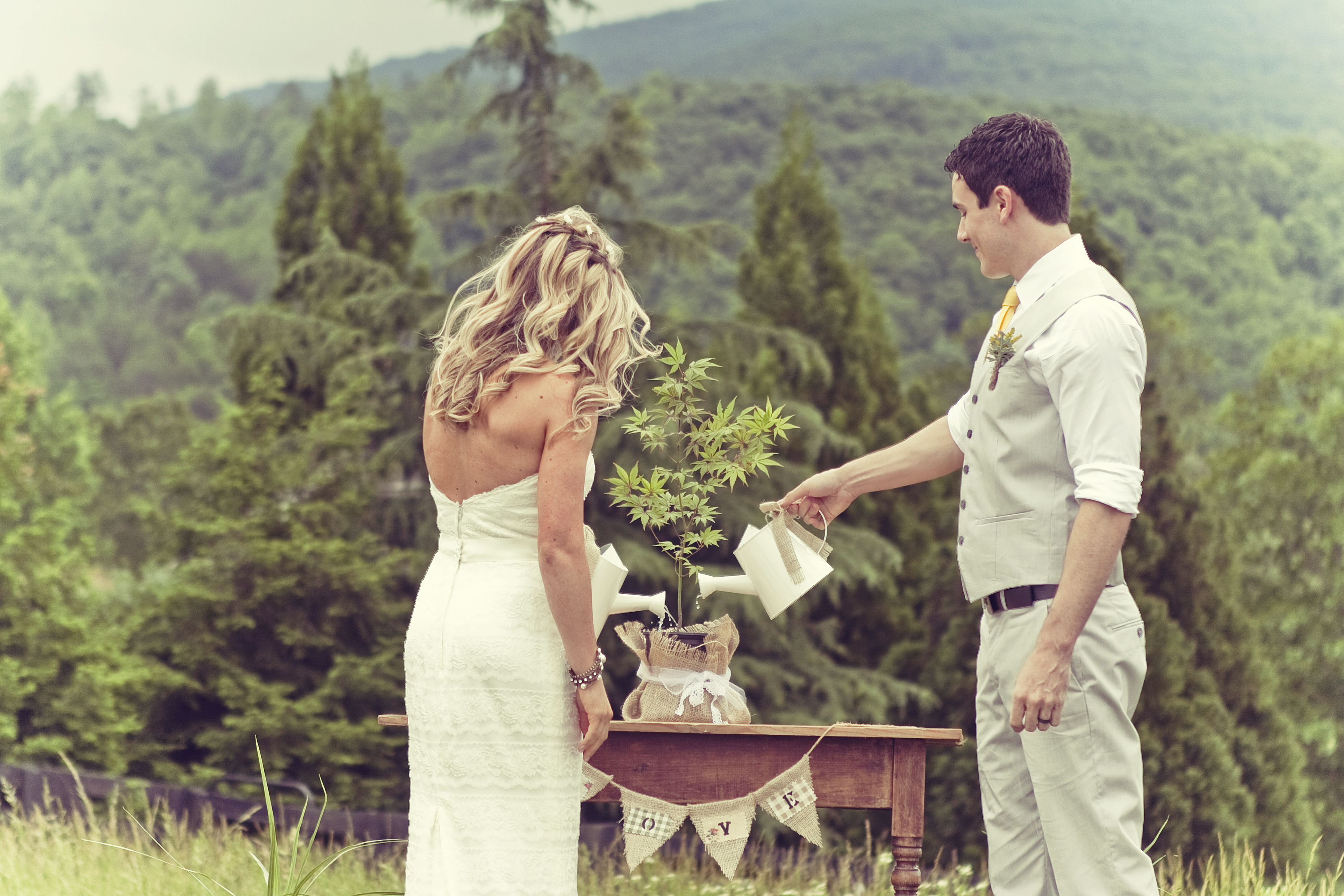 Ten Outrageous Ideas For Your Outdoor Ceremony Venues Near: Georgia Mountain Rustic Wedding