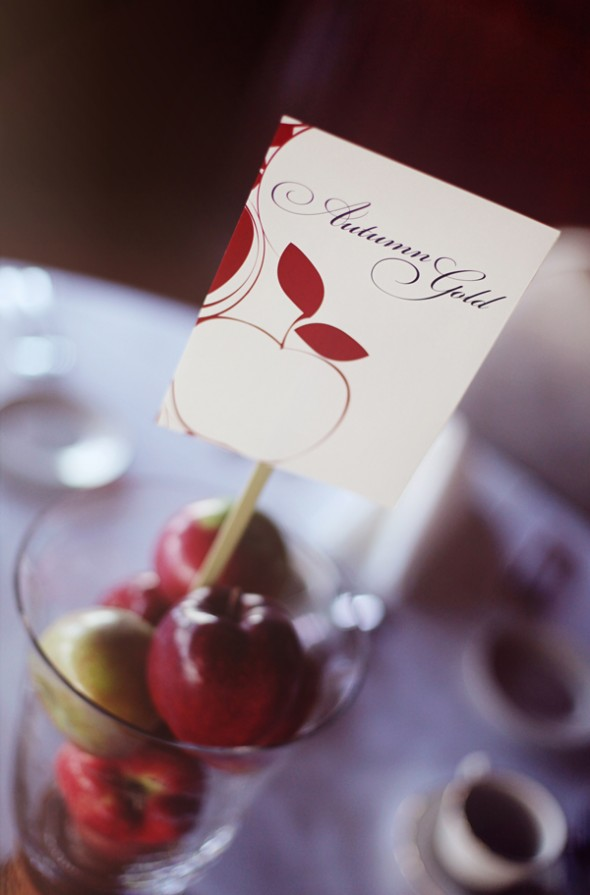 apple-themed-table-card-numbers