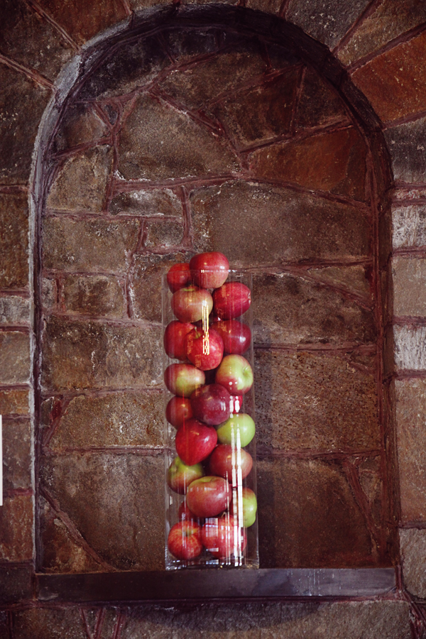 Apple themed rustic wedding rustic wedding chic for Apple decoration ideas