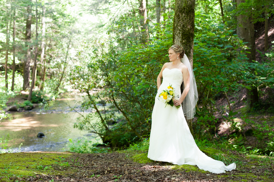 getting married at a state park rustic wedding chic