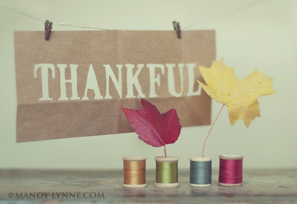 Top 5 Things Brides Can Be Thankful For