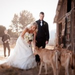 Idaho rustic farm wedding