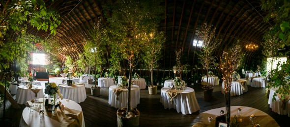 Wedding Reception With Trees Inside