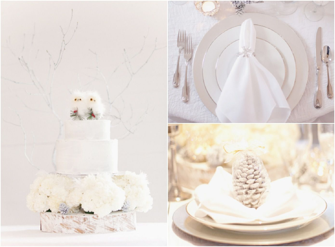 Fine Wedding Theme For Winter Illustration - The Wedding Ideas ...