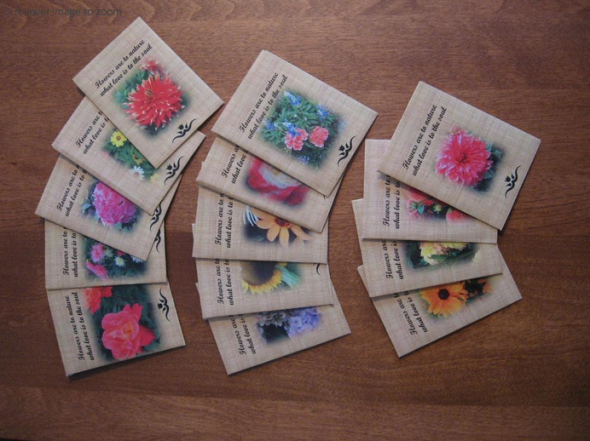 Seed Packet DIY