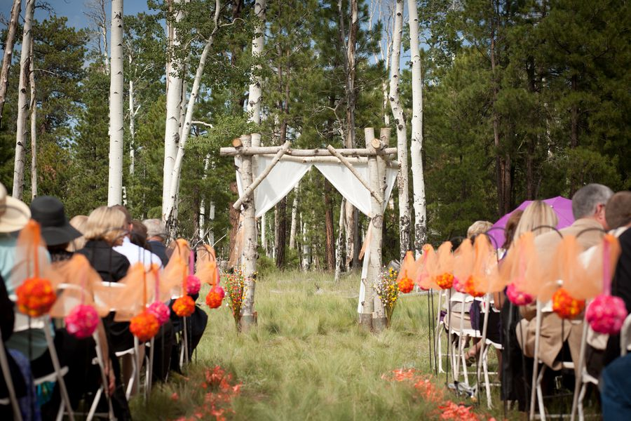 Birch Wedding Arbor