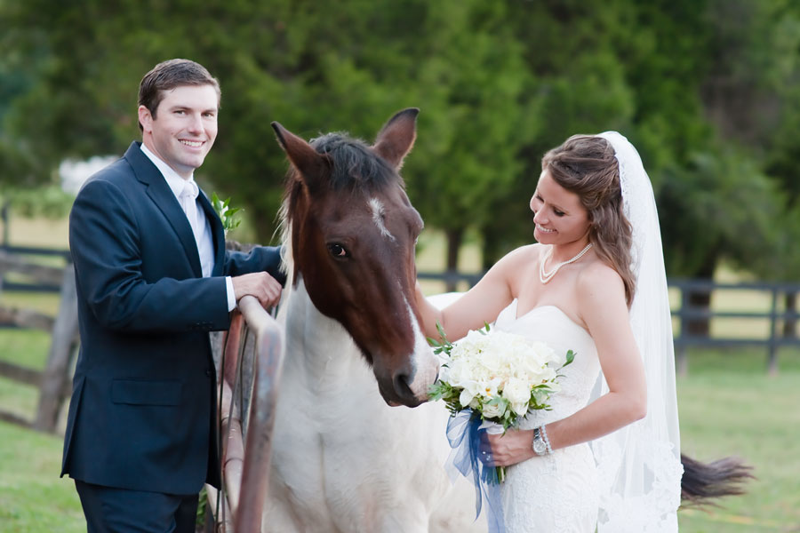 Bride & Groom With Horse