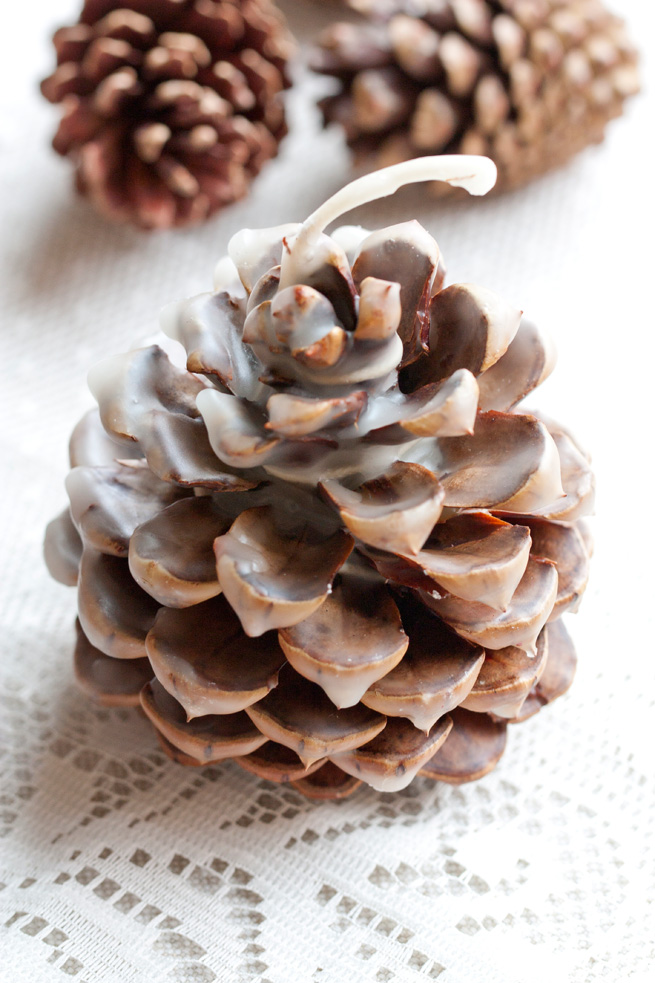 Pinecone Fire Starter Wedding Favor Rustic Wedding Chic