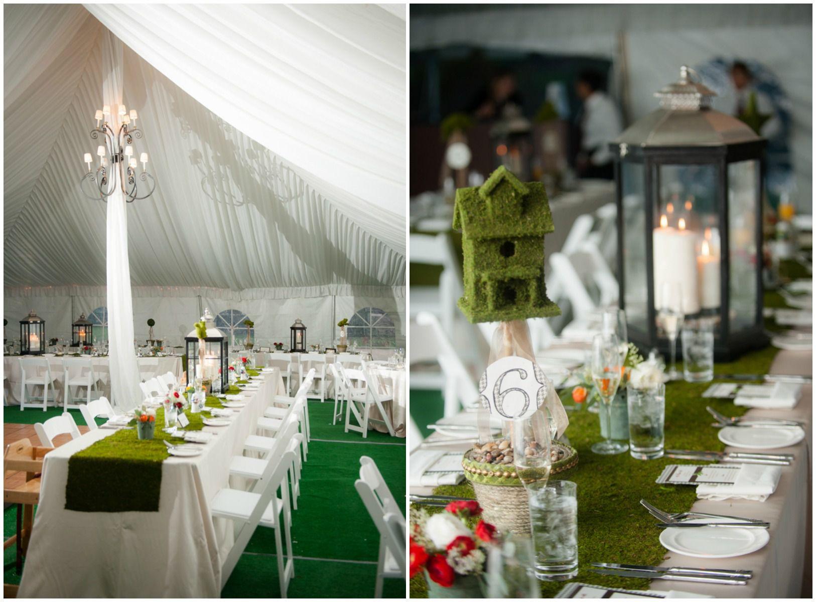 Wedding Cake Chamberry