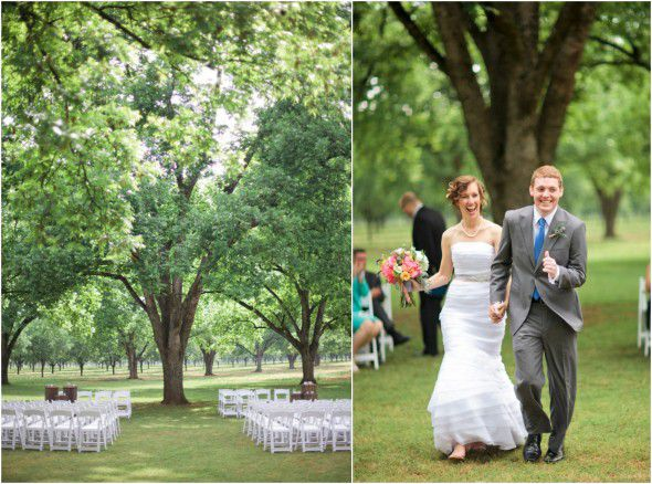 Wedding Under Tree