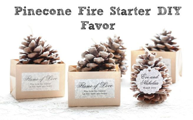 Pinecone Fire Starter Wedding Favor