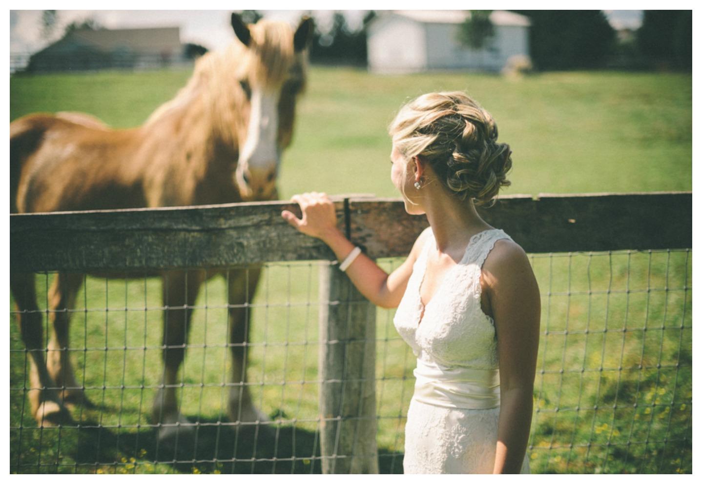 Maryland Farm Wedding