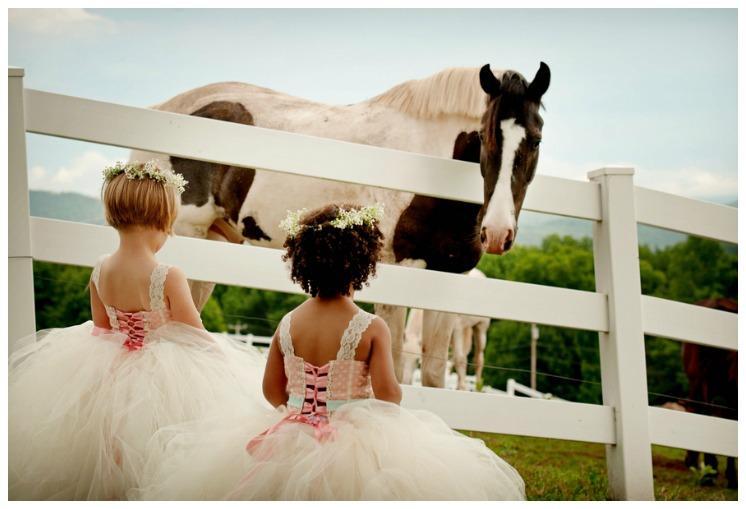 Catskills Farm Wedding