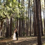 Country Woodland Wedding