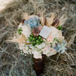 Top Ten Wedding Succulents