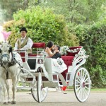 Perfect Wedding Carriage