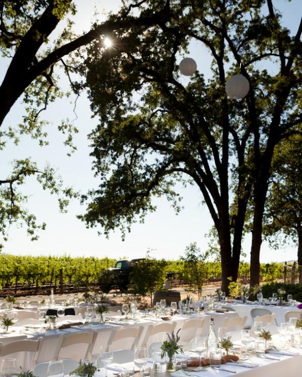 Backyard Wine Country Wedding Rustic Wedding Chic