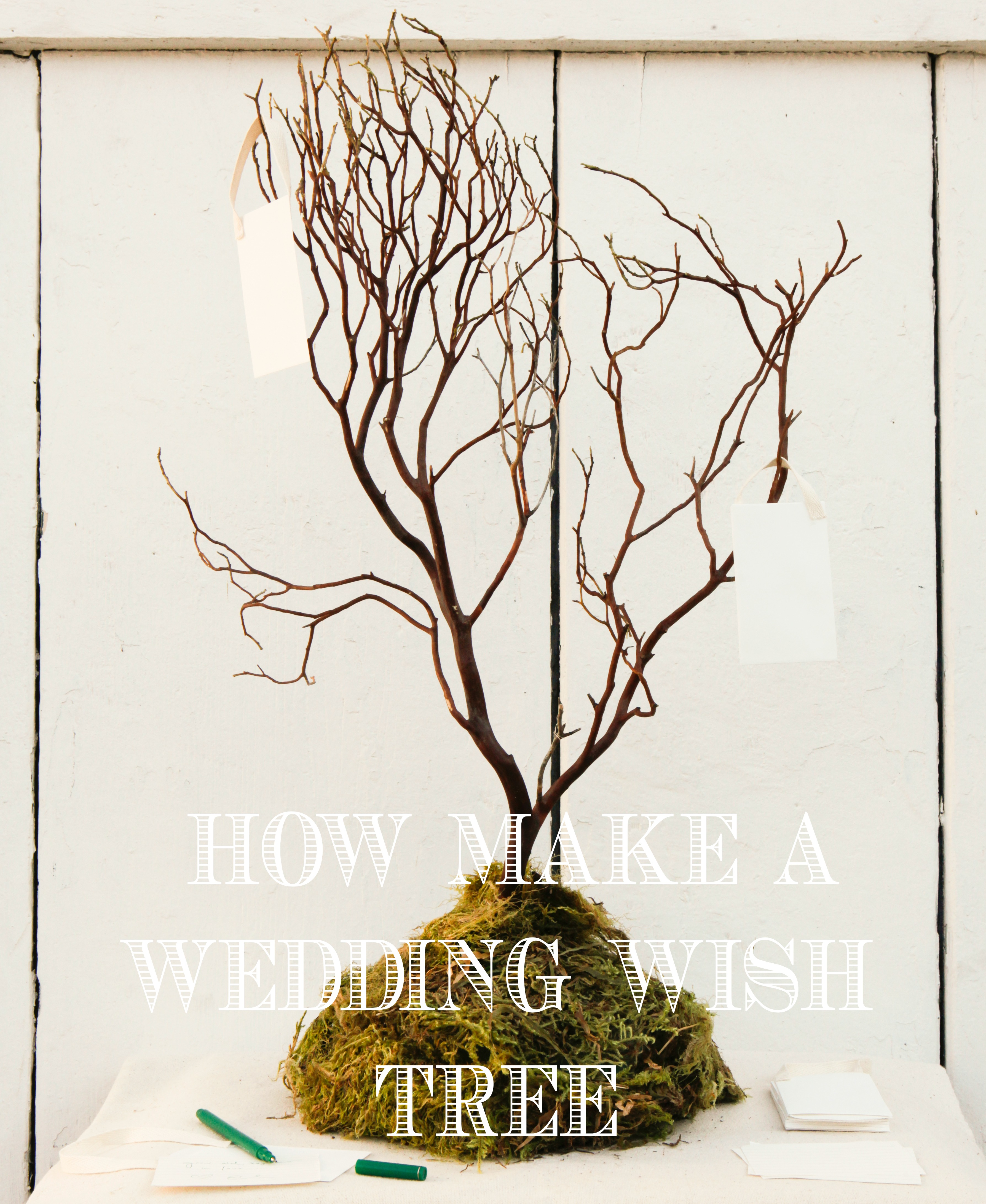 how to make a money tree for a wedding