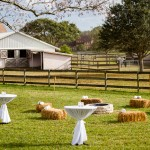 Florida Rustic Wedding