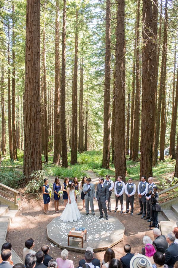 Blue Amp Gold Botanical Garden Wedding Rustic Wedding Chic