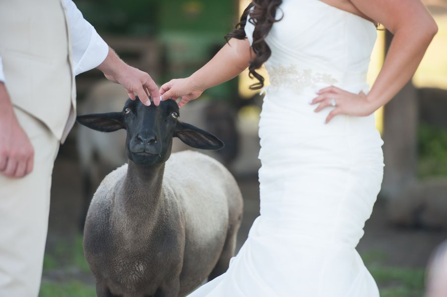 Classic Southern Country Wedding