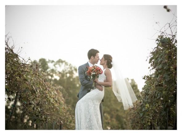 Just Married : Vineyard Wedding