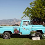 Backyard Wedding and Vintage Pickup