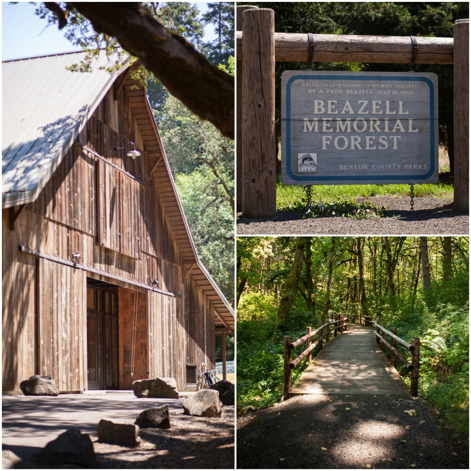 Beazell Forest Wedding Barn