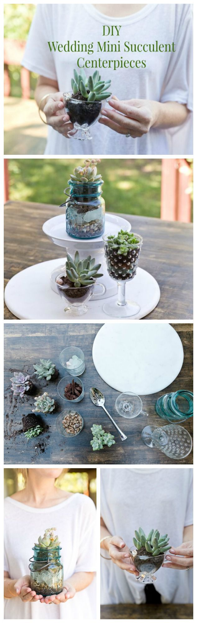 Awe Inspiring Diy Wedding Succulent Centerpieces Rustic Wedding Chic Home Interior And Landscaping Transignezvosmurscom