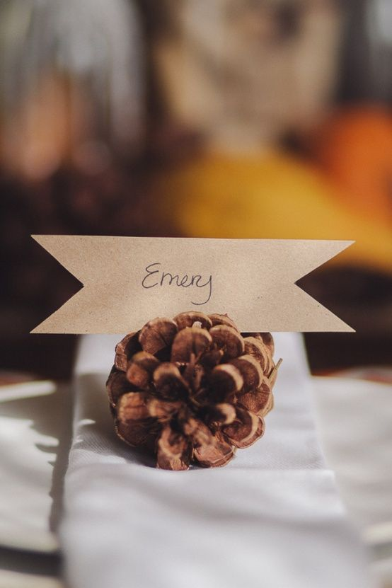 Ways To Use Pinecones At Your Wedding