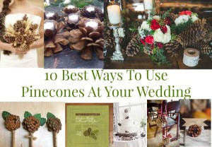 10 Ways To Use Pinecones At Your Wedding