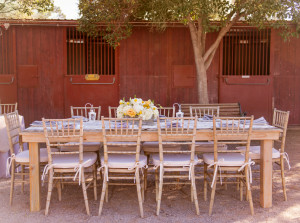 Las Vegas Rustic Wedding