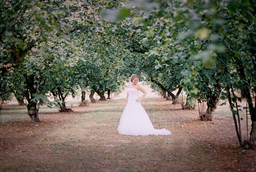 Fancy Backyard Wedding : Elegant Backyard Wedding  Rustic Wedding Chic