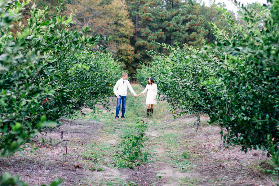 Citrus Grove Wedding