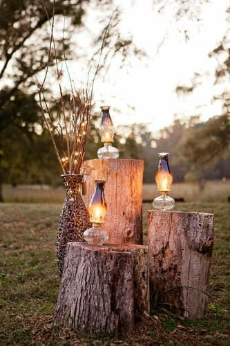 Tree Stumps Wedding