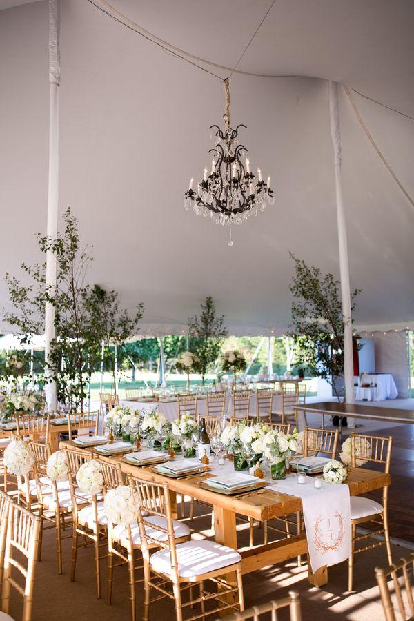modern backyard wedding